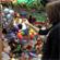 La Agencia Sanitaria Alto Guadalquivir organiza una campaña solidaria de recogida de alimentos y juguetes en sus centros